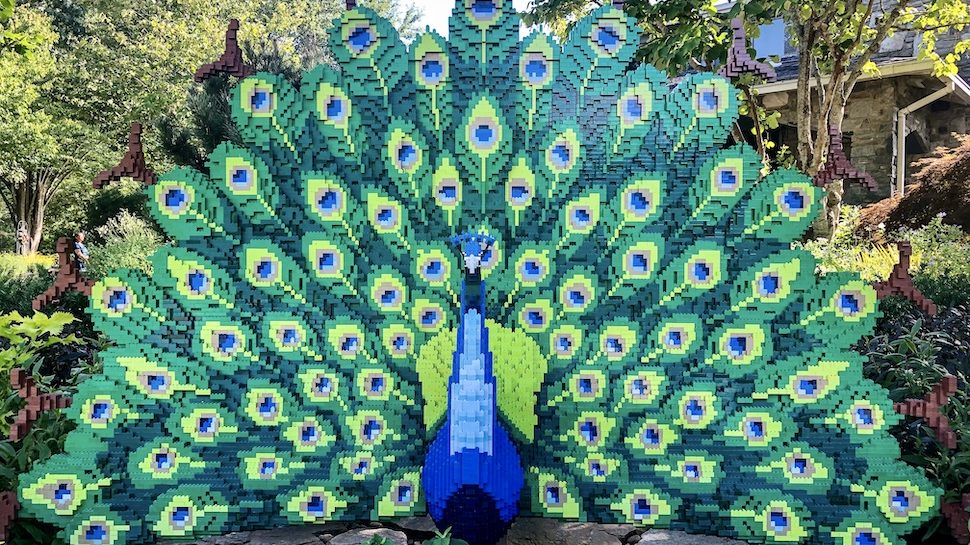 Peacock sculpture made from LEGO bricks